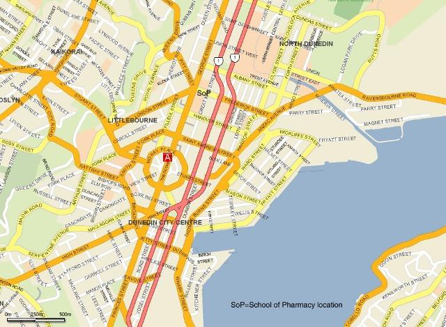Dunedin City web large